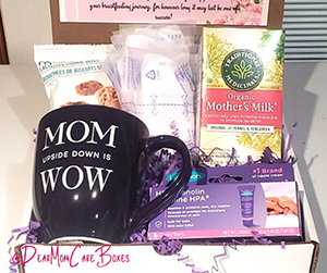 The Breastfeeding Box by Nutritious Gifts
